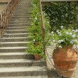 Stairs with wrought railing and beautiful terracotta pot - Stock Photo