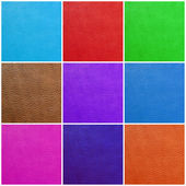 Multicolor leather collection — Stock Photo