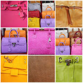 Collage with leather bags — Foto de Stock
