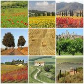 Beautiful Tuscany — Stock Photo