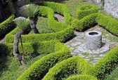 Jardin d'ornement avec haies et antique bien — Photo