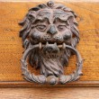 Beautiful old door knocker - Stock Photo