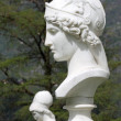 Bust of Athena — Stock Photo