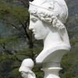 Stock Photo: Bust of Athena