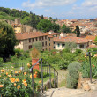 Garden of Roses in Florence — Stock Photo