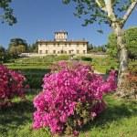 Garden and Villa La Petraia — Stock Photo