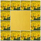 Sunny frame — Stock Photo