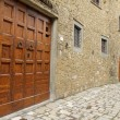 Beautiful vintage door in tuscan village — Stock Photo #18177395