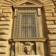 Detail of the facade of Pitti Palace - Foto Stock