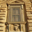 Detail of the facade of Pitti Palace — Stock Photo #18727697