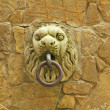 Beautiful medieval handle on wall — Stock Photo