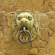 Beautiful medieval handle on wall — Stock Photo #18740605