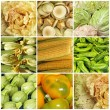Green and yellow vegetable collage — Stock Photo