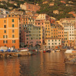 Beautiful italian marine village in sunset light, Camogli, Ligur — Stock Photo
