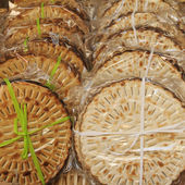 Matza, jewish specialty from Pitigliano town called Little Jeru — Stock Photo