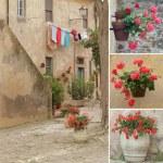 Italian style backyard collage, Populonia,Tuscany, Europe — Stock Photo
