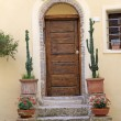 Front door with cacti , Tuscany, Italy, Europe - Stock Photo
