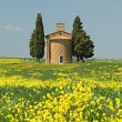 Fantastic tuscan landscape in spring, Chapel of Madonna di Vital — Stock Photo #25586875