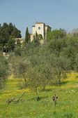 Villa en hermosos paisajes toscanos en primavera, italia, europa — Foto de Stock