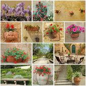 Podrobnosti o toskánské zahrady - koláž — Stock fotografie