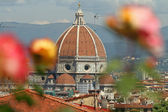 Florentine impression, cathedral of Florence seen from garden of — Stock Photo