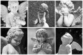 Angelic collage — Stock Photo