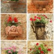 Collage with terracotta pots with flowers on old wall, Tuscany, — Stock Photo
