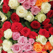 Funeral multicolor roses wreath — Stock Photo #29510273