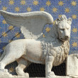 The symbol of Venice winged lion of St. Mark holding a book repr — Stock Photo
