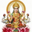 Lakshmi - Hindu goddess of wealth, prosperity,light,wisdom,fortu — Stock Photo #29658953