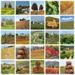 Series of images with fantastic tuscan landscape, Italy, Europe — Stock Photo
