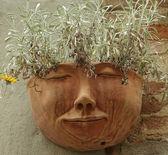 Keramická nádoba ve tvaru lidské tváře s rostlinami na zdi, t — Stock fotografie