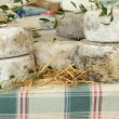 Cheese wheels on tuscan farmers market — Stock Photo