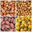 Collection of autumnal fruits backgrounds — Stock Photo