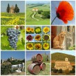 Beautiful Tuscany collage — Stock Photo