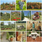 Fantastic tuscan countryside collage — Stock Photo