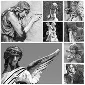 Cemetery angel collection — Stock Photo