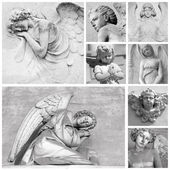 Beautiful cemetery angels — Stock Photo