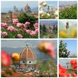 Garden of Roses ( Giardino delle rose) images collage, Florence — Stock Photo