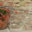 Old wall with handrail and decorative flowerpot with red geranium — Stock Photo #38163347