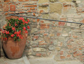 Old wall with handrail and decorative flowerpot with red geranium — Zdjęcie stockowe