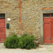 Rustic old doors — Stock Photo