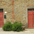 Stock Photo: Rustic old doors