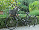 Vintage bike with straw basket parked — Zdjęcie stockowe
