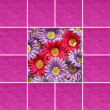 Floral composition — Stock Photo