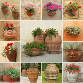 Elegant ceramic pottery with flowers collage — Stock Photo
