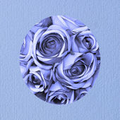 Boy birthday card with blue roses — Foto de Stock