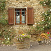 Idyllic window with roses — Stock Photo