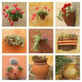Raccolta di poterry in ceramica con fiori sul muro antico — Foto Stock
