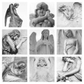 Cemetery angelic sculptures — Stock Photo